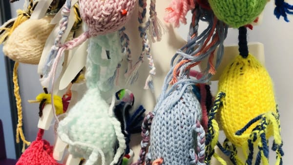 "Meet SMSR ""Knit a Neuron"" volunteer Michaela Matza"