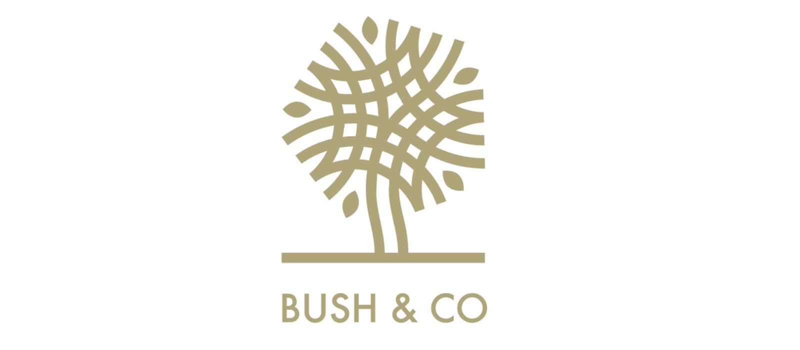 Stoke Mandeville Spinal Research & Bush & Co Announce 2020 Partnership!